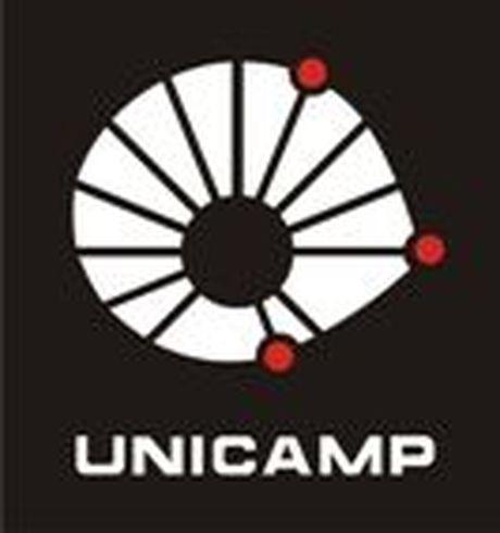 Unicamp libera conteúdo de aulas na web