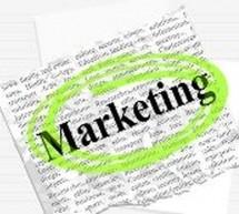 Curso Online Grátis: Marketing e Gestão Empresarial