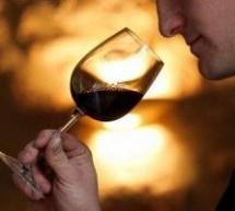 Curso grátis de degustação de vinho