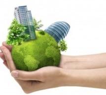 Curso online grátis: Desenvolvimento Econômico, Meio Ambiente e Constituição Federal