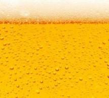Curso online grátis para amantes de cerveja