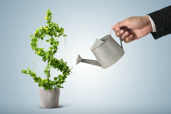 Curso Online Gratuito De Educação Financeira