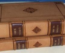 Baixe grátis o clássico livro Quincas Borba