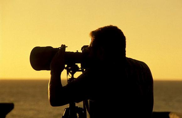 Curso Gratuito De Edição De Imagens Para Fotógrafos