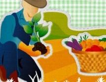 Senar-MT abre inscrições para cursos rurais gratuitos