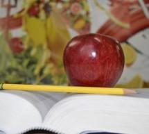 10 alimentos saudáveis para reeducação alimentar