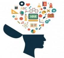 Fundação Stembyme lança site com mais de 50 cursos online gratuitos