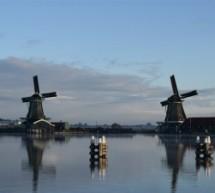 Orange Tulip Scholarships: 80 bolsas exclusivas para brasileiros na Holanda