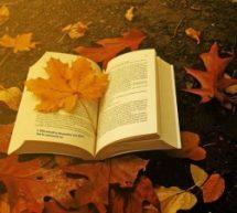 15 Poemas para Inspirar