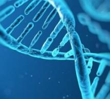 7 Canais do Youtube para Aprender Biologia