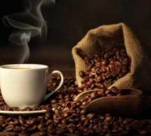 Mestrado em café na Itália tem bolsa integral para brasileiro