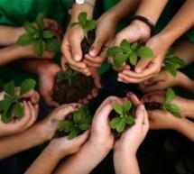 Sustentabilidade na escola: como aplicar na sala de aula
