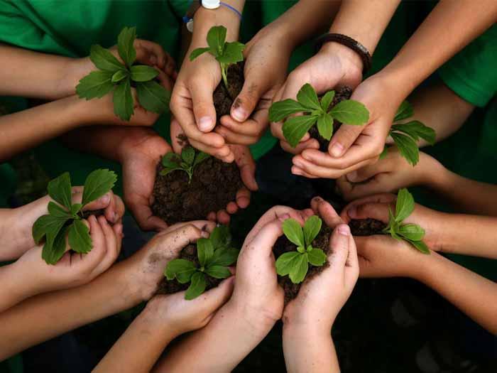 Sustentabilidade na escola: como abordar o tema na sala de aula