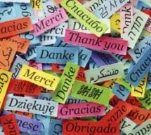 Idiomas sem Fronteiras: formação especializada de professores