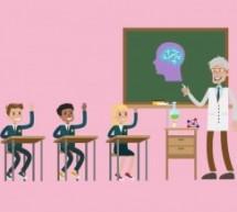 Curso gratuito USP: Neurociência Básica para Alunos do Ensino Médio