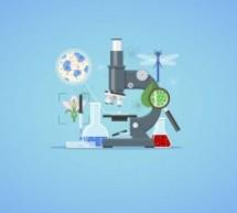 Ciências biológicas: guia completo da carreira e curso