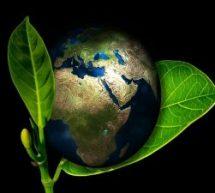 Curso grátis sobre os 7 R's da sustentabilidade