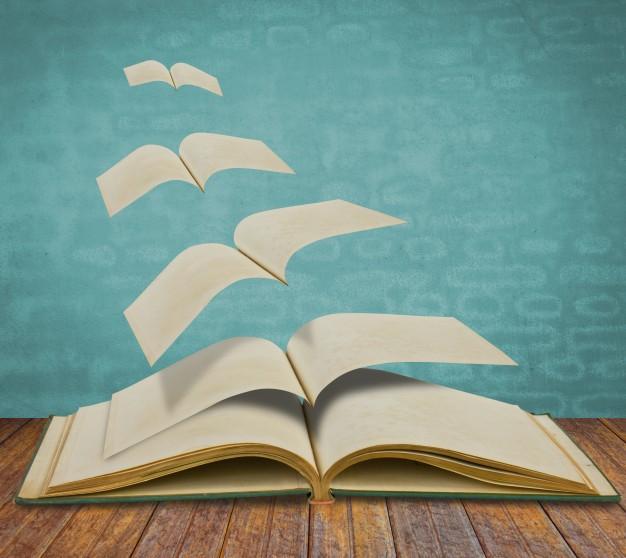 Funções da literatura 2