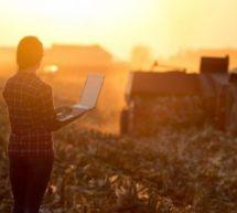 7 cursos gratuitos com certificado sobre inclusão digital