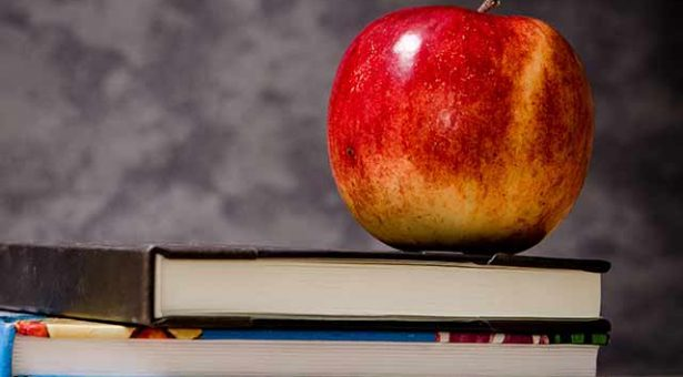 UFRGS oferece curso online gratuito sobre alimentação saudável na escola com certificado