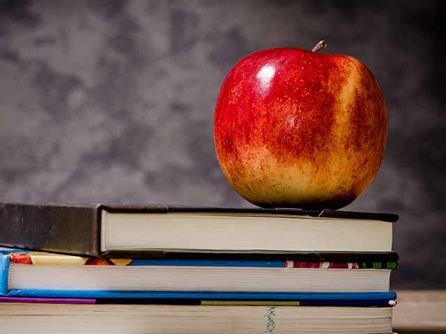 UFRGS: curso gratuito sobre alimentação saudável na escola